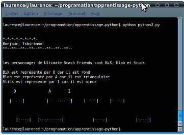 p_2eme_pas_en_python_console.png